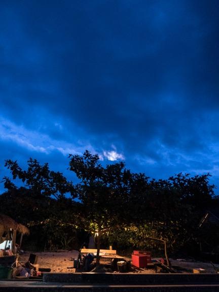 Staff hangout tree under a full moon
